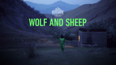 Wolf and Sheep selected at Directors' Fortnight !